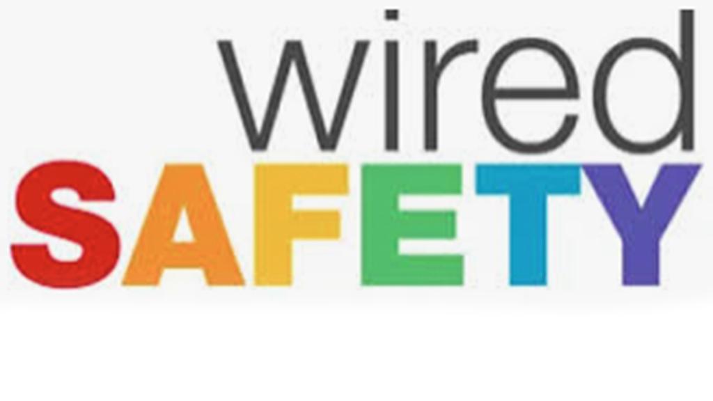 Wired Safety logo_web